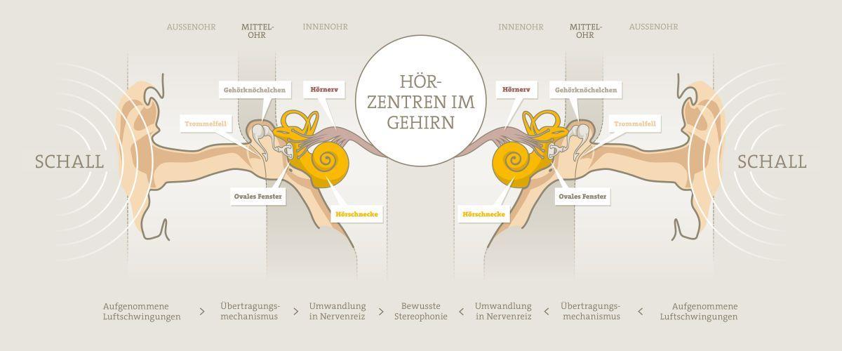 Binauraler Hörvorgang - Copyright Neuroth